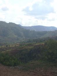 The rolling hills of Rwanda