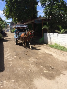 Gili Air doesn't have any cars and you can only get around via horse and buggy